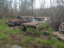 Mid-Sixties Ford Galaxie/LTD and 1962 Rambler by ChewyTheWolf