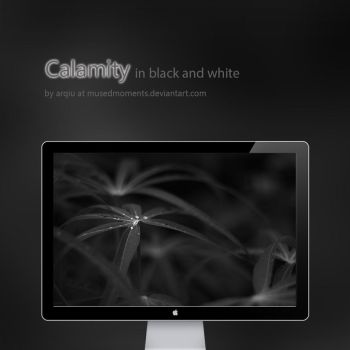 Calamity in Black and White by musedmoments