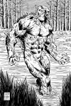 INKS: Swamp Thing by fredmast