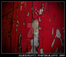 Red Paint by DarkNightZ24