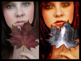 Autumn's Last Breath beforeandafter by FreeSpiritFotography