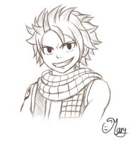 fairy tail - Natsu Dragneel by mary3m