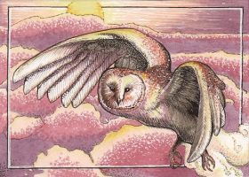 Alone at Dusk ACEO by Redwall151