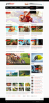 Grid - WordPress Theme by detrans