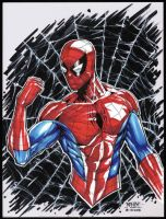 Spider-Man Bust  (COPIC) by rhixart