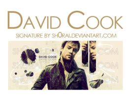 David Cook Sig by sh0Rai