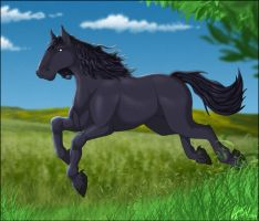 Friesian by Lizkay