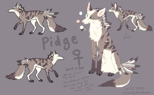 OC_Pidge (not for sale.) by Klissie