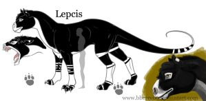 Lepcis Study by bberry06