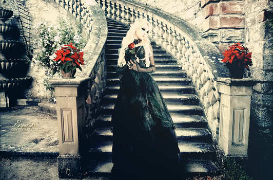 Another Fairytale by ErynnB