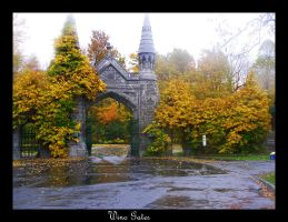 Wino Gates by Lord-Rhesus