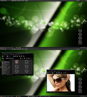 28.02.2010 Linux Mint 8 by Twentyeight-Ten
