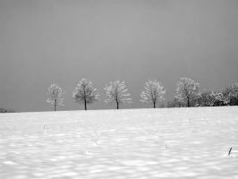 Winter BW8 by MephistoFFF