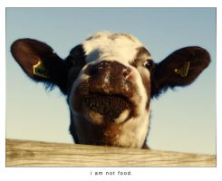 i am not food. by x-vegan-x