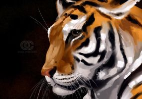 Tiger tiger burning bright... by orioncreatives