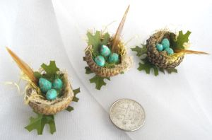 Acorn Humming Bird Nests by grimdeva