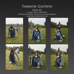 Pack 152 Tarmon Gai'don by Elandria