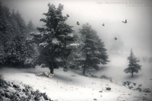 The Last Winter by DusterAmaranth