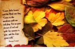 Autumn-desktop-wallpaper-6 by lucytherescuedcat