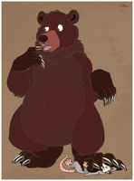 Bear Squishes by marillon954