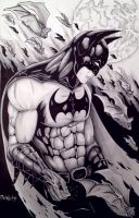 Batman: In the Pale Moonlight by Meletiche