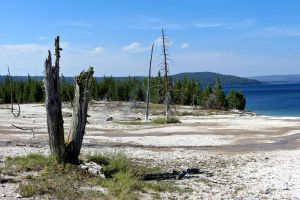 Yellowstone Geysers by tracy-Me