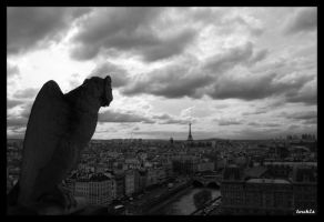 guarding paris by bulletingun