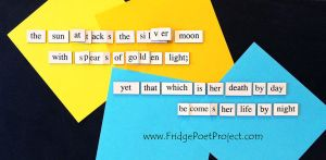 The Daily Magnet #303 by FridgePoetProject