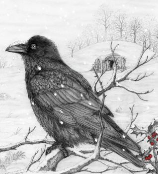 Midwinter Raven by PhilipHarvey