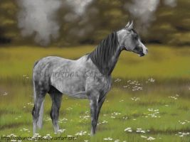 Pastel Drawing by CKArtpage