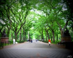 A Stroll Through Central Park by Poet515