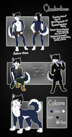 Chodonbow Reference Sheet 2012 by SnowyCakes