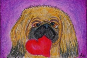 My Puppy Valentine Pekingese by clay-dreams