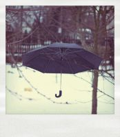 Umbrella-polaroid.. by 6Artificial6