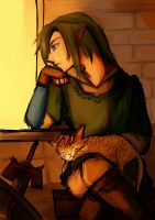 Link and Cat by Christy58ying