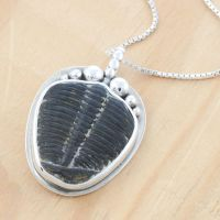 Stylized Fossil Trilobite Pendant by metalsmitten
