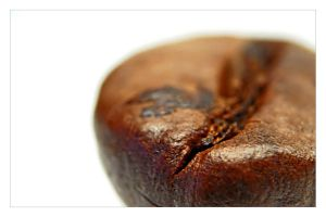 coffe seed by Serret
