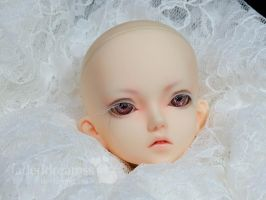 Ace -- Dreaming Doll RIO face up commission by fadeddreamss