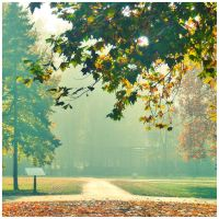 Lights go on by Sandrita-87