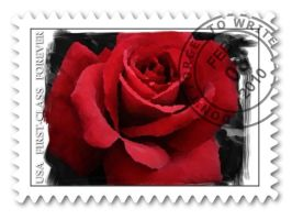 Painted Rose Postage Stamp by newdreamsstudio