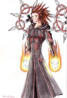 Axel - Final Phoenix by punkbot08