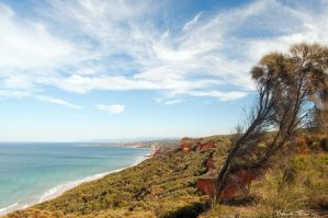 Anglesea Coastline 2 by DanielleMiner