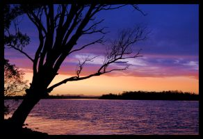 Hastings River sunset 3 by wildplaces