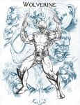 Wolverine And Company by caananwhite