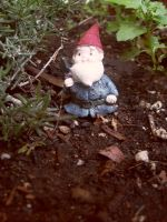 NV-Stock_Oh Bobby Gnome by NV-Stock