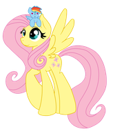 Fluttershy and RD Doll Vector by FriendDash