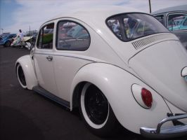 squatted beetle by BIGDOGDAVIDSON