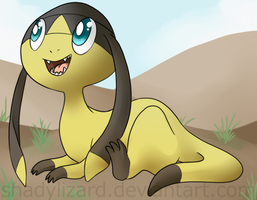 Little lizard in the sand by Amadere