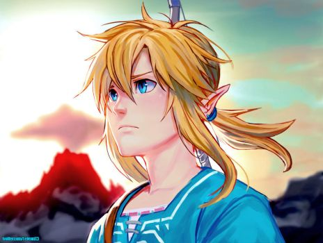 BotW Link by kasai