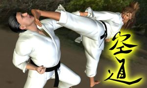 Karate kick in the face 3 by Soldier2000